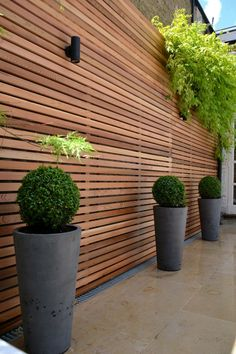 Great outdoor light fixture. Cedar timber batten cladding privacy screen trellis with grey stone pots buxus balls and Jura Limestone paving, London. (Click on photo for larger image.) Photo found here: http://rhsblog.co.uk/2012/07/02/cedar-timber-batten-cladding-trellis-privacy-screen/ More