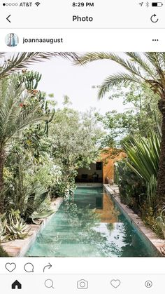 boja bazena, biljke