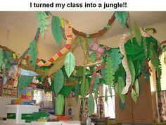 Classroom decorations rainforest