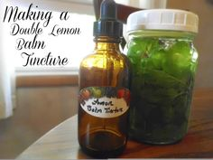 Livin' In The Green: Making a Double Lemon Balm Tincture