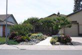 Gallery Roberta Walker Landscape Design, Landscapes, Gallery, Plants, Paisajes, Scenery, Roof Rack, Landscape Designs, Plant
