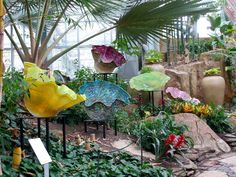 Meijer Gardens - I saw a similar exhibit by Chihulily in Pittsburgh.  LOVED it!