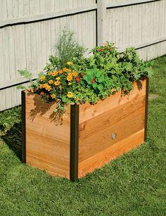 RaisedBeds.com - 2' x 4' Elevated Cedar Raised Bed, $259.95 (http://raisedbeds.com/2-x-4-elevated-cedar-raised-bed/)