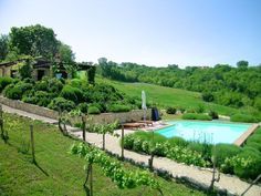 Il Vigneto near Todi, Umbria, Collazzone: Holiday house for rent. Read 17 reviews, view 24 photos, book online with traveller protection with the owner - 1009141