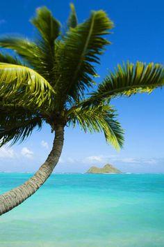 Lanikai beach, Oahu, Hawaii, USA