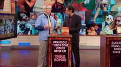 Dr. Marty Becker on Dr. Oz: If you missed my segment on The Dr. Oz Show yesterday, here's the clip! My topic: Dangerous things dogs should never eat. At least one of these will surprise you!