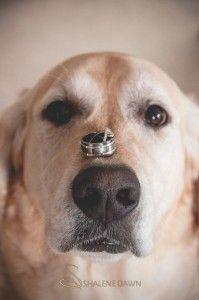 edmonton-wedding-photographer-shalene-dawn-spruce-grove-stony-plain-40