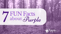 Did you know the color purple can affect you physically? Find out how, along with other fun facts about our favorite color!