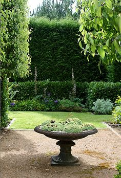 lovely garden and great use of hedges!