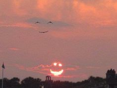 When the sun smiles the birds smile back