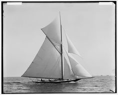 Wasp (Sloop), August 10, 1892, Detroit Publishing Co