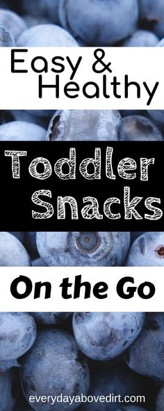 Easy and healthy toddler snacks on the go are a must for any family with young children. Especially during this back to school time it's important to have convenient snacks on hand. I've put together a list of healthy snacks for your toddler or young child. #toddlersnacks #backtoschool #easysnacks #healthysnacks