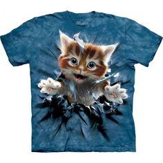 Ginger Kitten Breakthrough