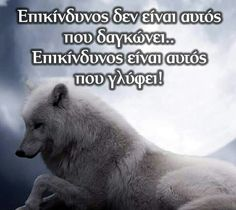 Smart Quotes, Clever Quotes, Me Quotes, Greek Quotes, True Words, Psychology, Poetry, Jokes, Wisdom