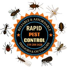 Rapid Pest control is located at 606 Blackacres Blvd. London ON and we can be contacted direct on 519 204 Animal Body Parts, Pest Management, Pest Control Services, Cursed Child Book, Free Vector Art, Insects, London, Ontario, Illustration