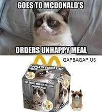 Funny Meme About Grumpy Cat vs. McDonald's