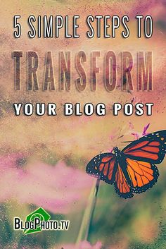 How To Transform A Blog Post In 5 Easy Steps