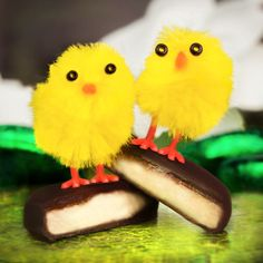 'Mint Choc Chick': The Easter season doesn't have to be expensive - just reach out to the people you love. These little mint choc chicks have it all - and they're cheep cheep! :)