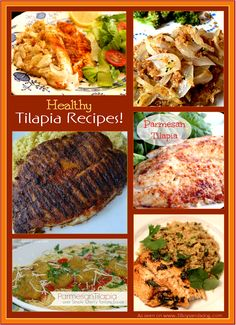 The New Year is coming and bringing it's resolutions of losing weight. Get a head start on that with this list of delicious and flavorful healthy Tilapia recipes from around the web! The United States imported nearly $900,000 worth of Tilapia in 2014, more than any year previously. Due to the heart healthy benefits, low […]