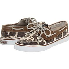 Adorable Sperrys!