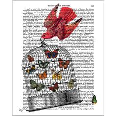 FabFunky Flying Birdcage Print ($42) ❤ liked on Polyvore featuring home, home decor, wall art, backgrounds, art, birds, butterflies, article, detail and embellishment
