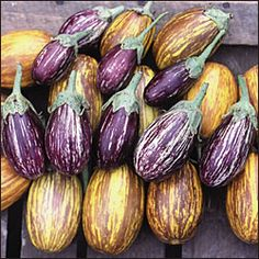 A beautiful and edible striped eggplant. Heavy yields of teardrop-shaped fruits are green with vibrant lavender stripes and striking green calyxes. Best eaten small, when fruits are about long. Eggplant Seeds, Full Sun Annuals, Cape Gooseberry, Organic Seeds, Seed Packets, Types Of Soil, Growing Plants, Fruits And Vegetables, Harvest