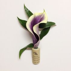 Purple & white calla lily boutonnière in a wine cork for the groom.