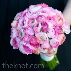 Ranunculus bouquet.. But in white. @Kat Ellis Watson I think I've found what I've been looking for :) I like the pink for bridesmaids too though..