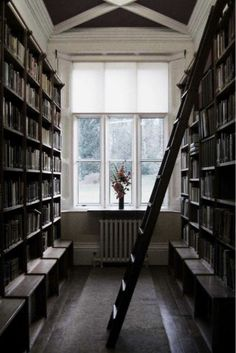 library nook. All this needs is a window seat and it'd be perfect!