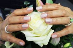 Take a look at the exciting range of Evo Gel colours and expand your kit with the latest collection of the vegan, cruelty-free nail gel. Mani Pedi, Manicure, Bio Sculpture, Classy Nails, Gel Color, Evo, Nails Inspiration, Cruelty Free, Nail Colors