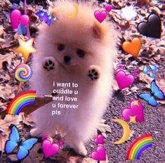 42 Ideas For Memes Apaixonados Justin Cute Cat Memes, Cute Love Memes, Funny Animal Memes, Funny Love, Funny Memes, I Love U Meme, Cute Images, Cute Pictures, Memes Riverdale