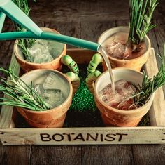 The Botanist bar and restaurant, Leeds. Love this place, looking forward to a second visit.
