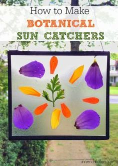 Botanical Sun Catchers -- these look so pretty!!
