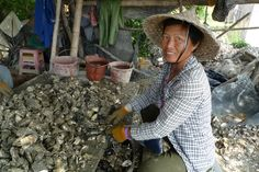 Xiamen University - Oyster shell recycling project