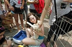 College of Charleston sophomore Emmy Murney holds a puppy brought by Pet Helpers to help students relieve some of the stress of exam week.