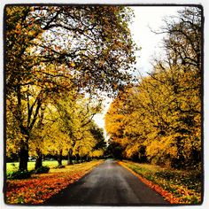 Autumn in London - Beautiful
