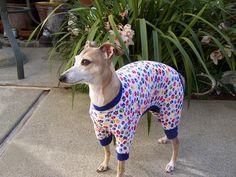 Italian Greyhound Paw Prints  Thermal Pajamas
