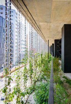 都市の「ヒートアイランド現象」を和らげる。|日建設計
