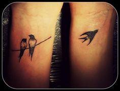 hirondelle -oriane-abraxas