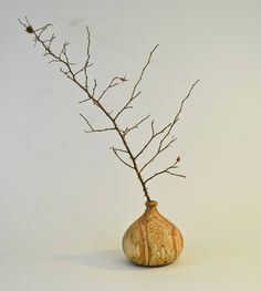 """Excited to share the latest addition to my #etsy shop: Med Limber Pine Twig Pot - 7""""w x 7""""l x 5.5""""h http://etsy.me/2DLnqG5 #art #sculpture #vintage #gift #decor #handmade #wood #rustic #woodturning"""