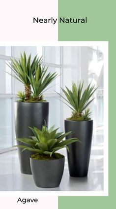 7 Fascinating Tips: Artificial Plants Outdoor Succulents artificial plants office minis.Artificial Plants Outdoor Succulents artificial plants balcony home. Artificial Succulents, Planting Succulents, Artificial Flowers, Planting Flowers, Artificial Garden Plants, Artificial Cactus, Indoor Flowers, Artificial Turf, White Planters