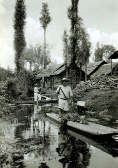 Xochimilco - the floating gardens.