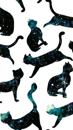Wallpaper, cat, Galaxy