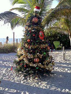 Doin' up the yard for Christmas! (beach, seashore, ocean, coastal, nautical, holiday)