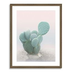 Cactus art (love the soft pink background and wood frame)