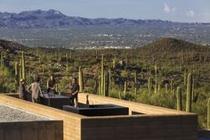The dust architect has created the beautiful tucson mountain retreat in sonoran desert in tucson, Arizona. Here are the wonderful pictures of tucson mountain retreat for you to see! Tucson, Rammed Earth Homes, Concrete Steps, Desert Homes, Arizona Usa, Garden Landscape Design, Pergola Plans, Diy Pergola, Architecture Details