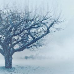 This is my winter Song to you...  by breathingmysoul