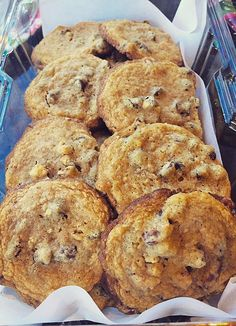 Everything-good-about-fall cookies (pumpkin and cinnamon chocolate chip cookies with graham crackers and pecans)