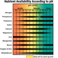 Nutrient Availability According to pH. Home Hydroponics, Hydroponics System, Hydroponic Gardening, Container Gardening, Aquaponics Supplies, One Step Forward, Calcium Magnesium, Soil Ph