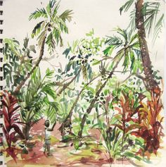 Mango Tree Sketch Images & Pictures - Becuo
